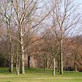 Circular Walk 3: Horn Park