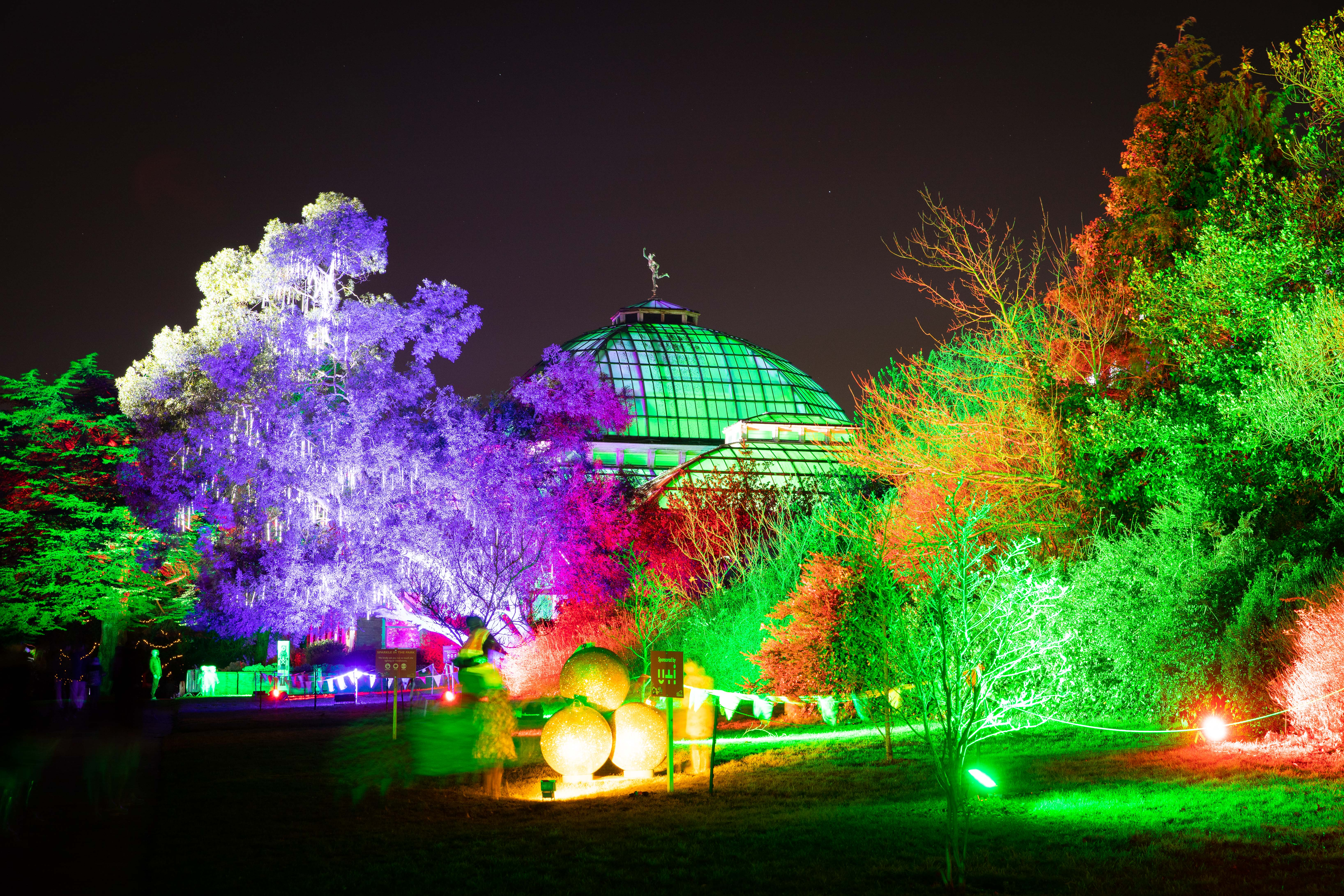 Winter garden at sparkle in the park lit with colourful lights.